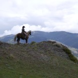 rocking-z-ranch-mt-horseback