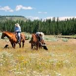 aspen-ridge-resort-horseback