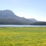 brooks-lake-lodge-views