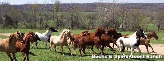 bucks-spurs-ranch-missouri
