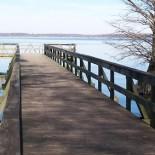 clover-creek-ranch-reelfoot-lake
