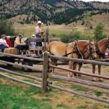g-bar-m-ranch-hayride
