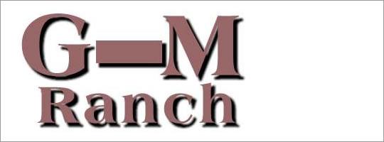g-bar-m-ranch-montana