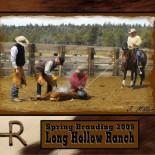 long-hollow-ranch-branding