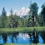 moose-head-ranch-fishing