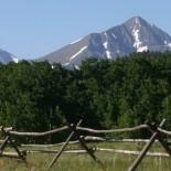 pines-ranch-views