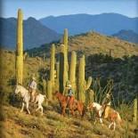 rancho-de-los-caballeros-horseback