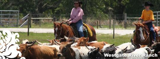 westgate-river-ranch-florida
