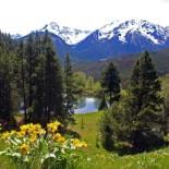 chilcotin-holidays-ranch-beaver-pond