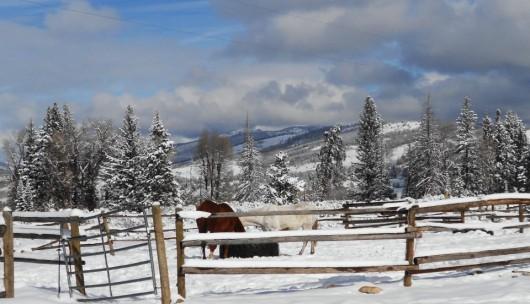 Medicine Bow Lodge Winter Scene