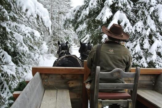 sleigh-ride-bar-w-ranch