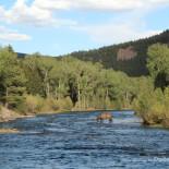 rainbow-trout-ranch-horse-conejos-river-2