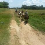 st-john-ranch-horseback-riding-adults-b