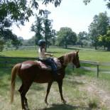 st-john-ranch-lodge-horseback-riding-2