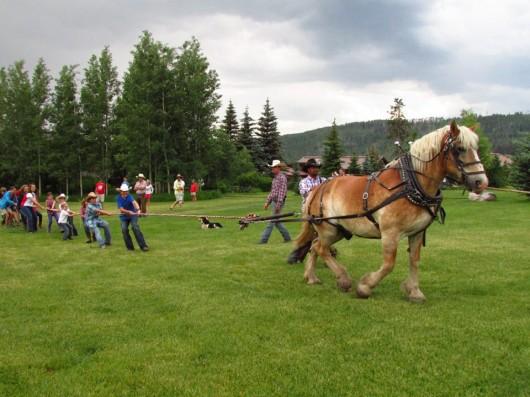 4th-july-vista-verde-draft-horse-tug-of-war