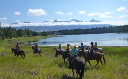 horses-views-bar-w