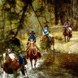 pepperbox-ranch-horseback-riding
