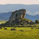 Brush Creek rock and pasture