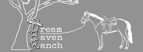 dream-haven-guest-ranch-mt