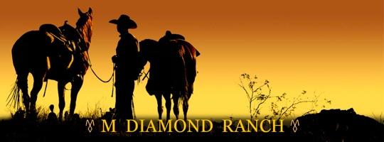 M Diamond Ranch Arizona