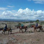 M Diamond Ranch Horseback Riding