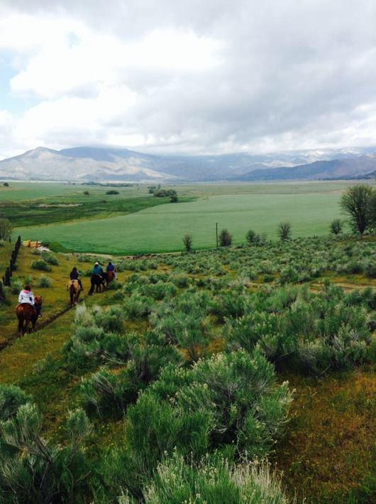 rankin-ranch-horseback-ride