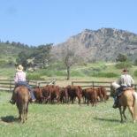 Sylvan Dale Guest Ranch Colorado