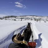 vista-verde-sleigh-ride