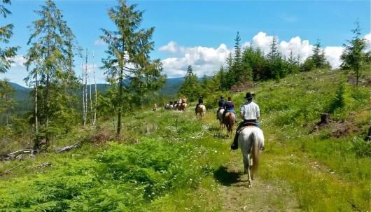 western-pleasure-horseback-ride